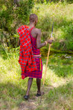 Maasai warrior royalty free stock photography