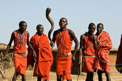 Maasai warrior perform dance in their traditional clothes and jewelry. Royalty Free Stock Photo