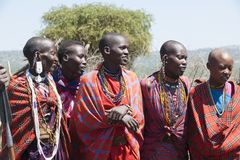 Maasai Women, Tanzania Stock Photo