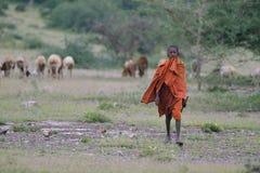Makuyuni, Tanzania, February 09, 2016: Maasai young sheppard royalty free stock images