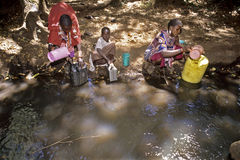 Maasaivrouwen die water in kleine stroom halen Stock Foto