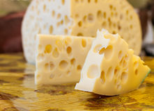 Maasdam干酪 库存图片