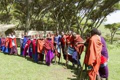 Maasi Village in ceremony, Ngorongoro Conservationa Area, Tanzan Stock Image