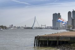 Europe, Netherlands, Rotterdam, Holland, City skyline. With Dutch Flags