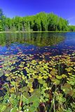 Northern Highland American Legion State Forest. Mabel Lake in the Northern Highland American Legion State Forest of Wisconsin stock image