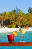 Macédoine de fruits sur la plage des Maldives Image libre de droits