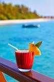 Macédoine de fruits sur la plage des Maldives Photo stock