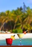 Macédoine de fruits sur la plage des Maldives Images stock