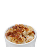 Mac and cheese. Homemade macaroni and cheese in a ramekin over white with copyspace Royalty Free Stock Image