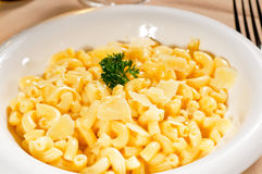 Mac and cheese Royalty Free Stock Photo