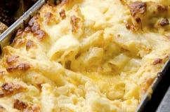 Mac e queijo Foto de Stock