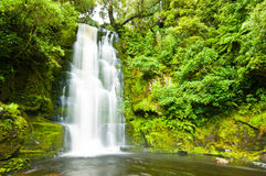 Mac Lean Falls in the Catlins Stock Image