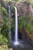 Mac Mac Falls in South Africa Royalty Free Stock Images