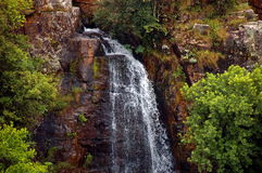 Mac-Macwasserfall, Südafrika Lizenzfreies Stockbild