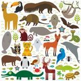 Maca do jacinto do jaguar do guaxinim do lobo Maned do golfinho do macaco do peixe-boi da boa do tatu do lobo-marinho do bastão d ilustração stock