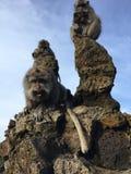 Macaca Fascicularis, krab-Etend Macaque, of Macaque Met lange staart bovenop Onderstel Batur tijdens Zonsopgang in Bali, Indonesi Royalty-vrije Stock Foto's