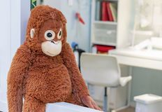 Macaco alaranjado do brinquedo macio na loja de brinquedos fotografia de stock royalty free