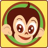 Macaco-cabeça Imagem de Stock Royalty Free