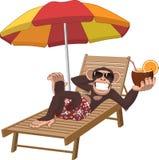 Macaco com um cocktail ilustração royalty free