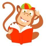 Macaco com um livro Foto de Stock