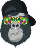 Macaco com vidros Fotos de Stock Royalty Free