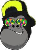 Macaco com vidros Imagens de Stock Royalty Free