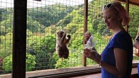 Macaco de alimentação da mulher vídeos de arquivo
