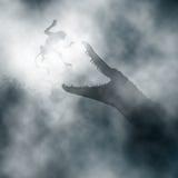 Macaco de ataque do crocodilo Imagem de Stock Royalty Free