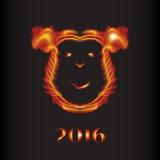 Macaco 2016 do fogo Fotos de Stock Royalty Free