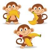 Macaco e banana Fotos de Stock Royalty Free