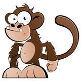 Macaco engraçado Imagens de Stock Royalty Free