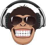 Macaco engraçado com vidros Imagens de Stock