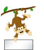 Macaco engraçado na árvore com sinal em branco Fotos de Stock Royalty Free