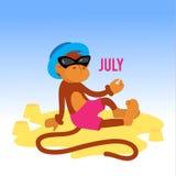 Macaco engraçado na praia Imagens de Stock