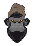Macaco irritado com chapéu Fotos de Stock Royalty Free