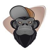 Macaco irritado com tampão Fotos de Stock