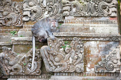 Macaco na cinzeladura de pedra Imagens de Stock