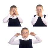 Macaco três fotos de stock royalty free