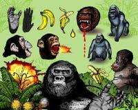 Macacos Foto de Stock