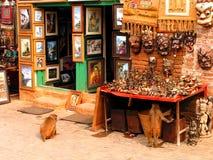 Macacos curiosos em Kathmandu fotografia de stock royalty free