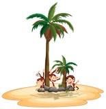Macacos e ilha Imagens de Stock
