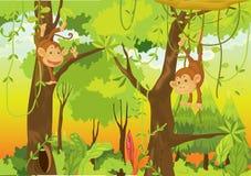 Macacos na selva Fotografia de Stock