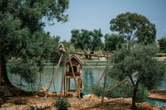 Macacos nos animais selvagens do jardim zoológico no jardim zoológico Itália do safari do apulia de Fasano fotografia de stock