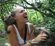 Macacos que atacaram a mulher Fotos de Stock Royalty Free