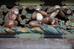 Macacos sábios Fotos de Stock Royalty Free