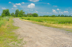 Macadam road on the edge of wheat field in rural area, Ukraine. Country macadam road on the edge of wheat field in rural area, Ukraine Stock Photo