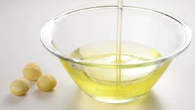 Macadamia έλαιο και καρύδια απόθεμα βίντεο
