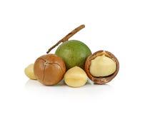Macadamia καρύδια στην άσπρη ανασκόπηση Στοκ εικόνες με δικαίωμα ελεύθερης χρήσης