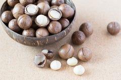 Macadamia καρύδια στο κύπελλο καρύδων Στοκ φωτογραφίες με δικαίωμα ελεύθερης χρήσης
