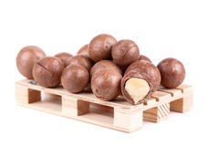 Macadamia καρύδια στοκ εικόνα